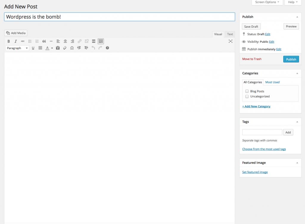 Visual Editor Blank in WordPress