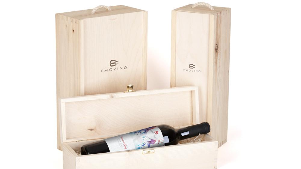 Emovino Logo Design Presentation Box 2
